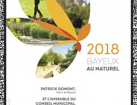 Carte de voeux Bayeux 2018