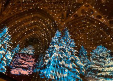 Illuminations sur la cathédrale de Bayeux