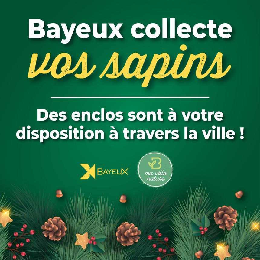 Visuel Bayeux collecte vos sapins de Noël