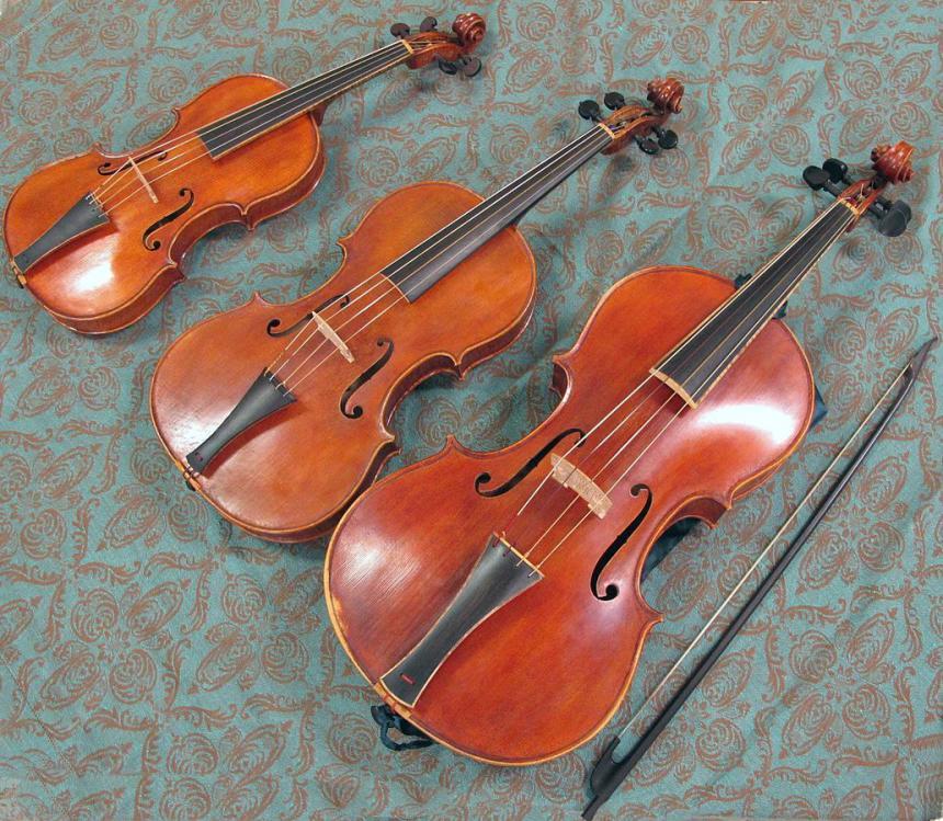 Geige Bratsche Vergleich